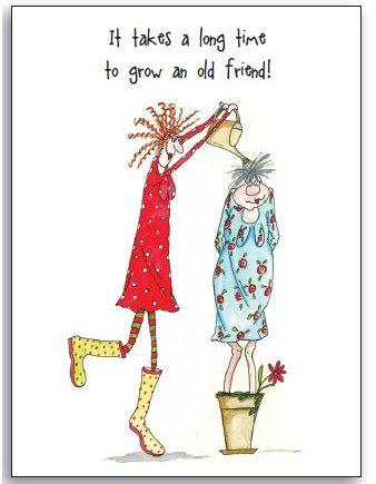 Greeting Card - Camilla & Rose